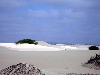 isla-boa-vista--excur1-pescacacaboverde-400x300