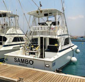 sambo-662x662